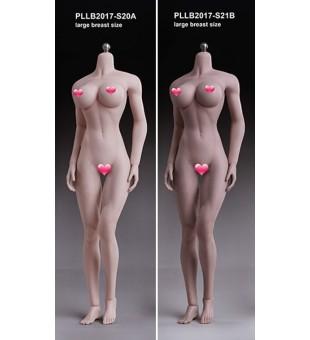 TBLeague Seamless Muscular Female Body (BIG)大胸女素體 PLMB2017-S20A Pale / 白膚色 & PLMB2017-S21B Suntan / 小麥色