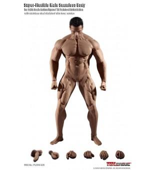 TBLeague 1/6  M35 Seamless Super Muscular Body / TBL1比6 M35 包膠超大隻肌肉紋男素體